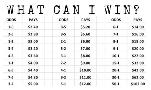 Horse racing betting payout chart.